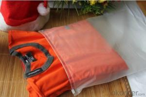 Bottom Sealed Unprinted PE Zipper Packing bag