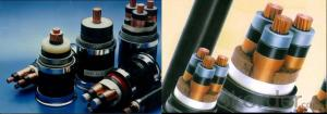 Up to 35KV XLPE Insulated Medium Voltage Electric Power Cables