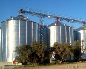 Safety Guarranteed Salt Strage Silo,Assured 30 Years Lifespan