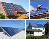 Mono 12V 100W con Certificado para Paneles Solares TUV