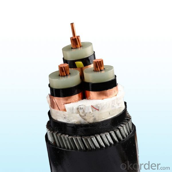 XLPE Insulated Steel Wire Armored Multi-core Electric Power Cable 6/10kV