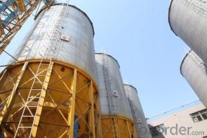 All-round Safety Poultry Feed Bins, Feed Silo Bins Used for Poultry Equipment