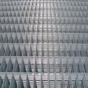 Galvanized Welded Mesh (professional factory)