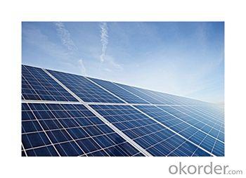 Solar Modules Poly-crystalline 250W 156*156 Module