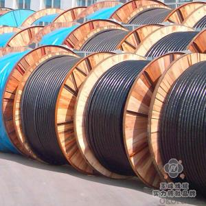 Multi Size PVC Insulated Flexible Cable Single Stranded Electric Copper Wire