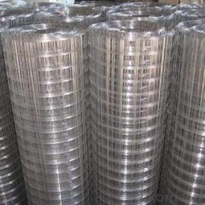 304 stainless steel Welded Wire Mesh (china)