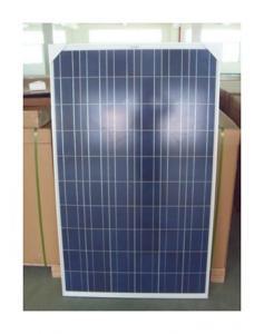 Solar Modulels Poly-crystalline 245W 156*156 Module