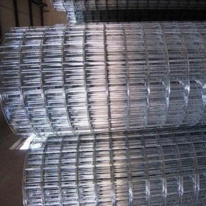 1 inch Galvanized Welded Wire Mesh (profess factory)