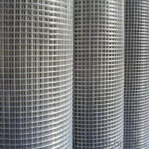 cheap price Welded Wire Mesh 50X50 Stainless Steel (china manufacturer)