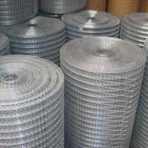 fine 1/2 inch galvanized Welded Wire Mesh (professional factory)