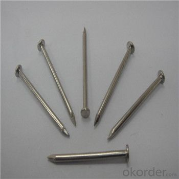 Common Nail High Quality Direct Factory Supply