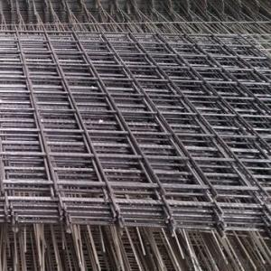Fine 6x6 Welded Wire Mesh Panels (china manufacturer)