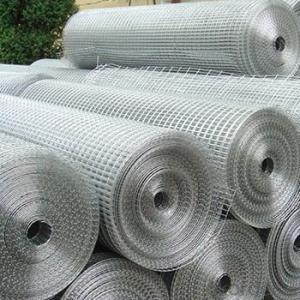 fine 1 inch Galvanized/Stainless Steel Welded Wire Mesh Rolls(china manufacturer)