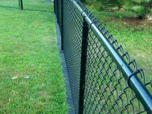 Powder Coated Galvanized Chain Link Fence