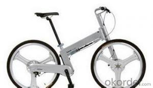 Orginal LERNIAO E lectrical Bike IN  Good Quality