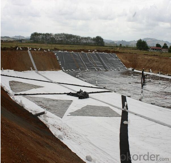 Geotextile for Slope Protection Needle Punched