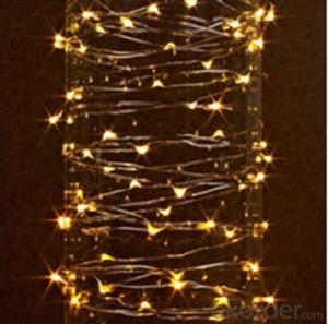 Decorate Led Light with Non-Removable Bulbs