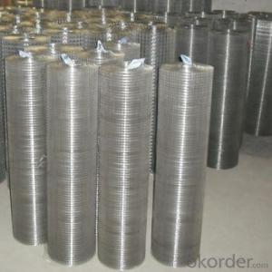 1/4 Inch Pvc Coated Welded Wire Mesh(wholesale price)