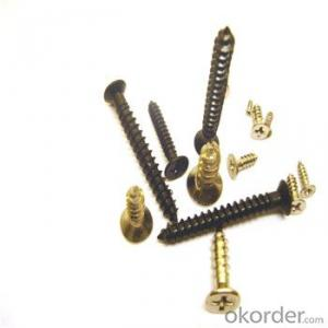Self Drilling Screw Tapping Screw from Manufacturer Directly