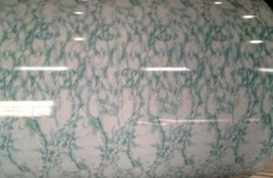 Printing Steel for Waterproof Paint  Pattern Printed Layer