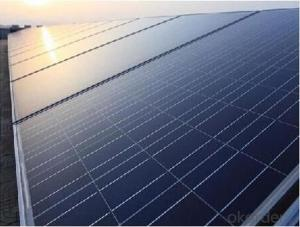 Polycrystalline Silicon Solar Modules 250W
