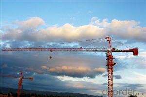 Tower Crane of Chang Li Model Number QTZ63B