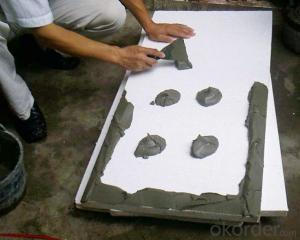 Heat Preservation Mortar for Construction from China