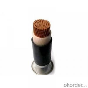 CU/PVC/SWA/PVC Single core Electric Cable 0.6/1kV