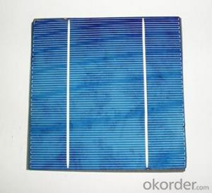 Grade A 156x156mm Poly Stable Quality Solar Cell