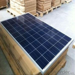 Polycrystalline Solar Panels for 230W Series