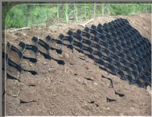 HDPE Geocell Smooth Geocell Grass Paver