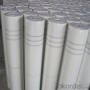 Fiberglass Mesh Roll Alkali Resistant 100 gram