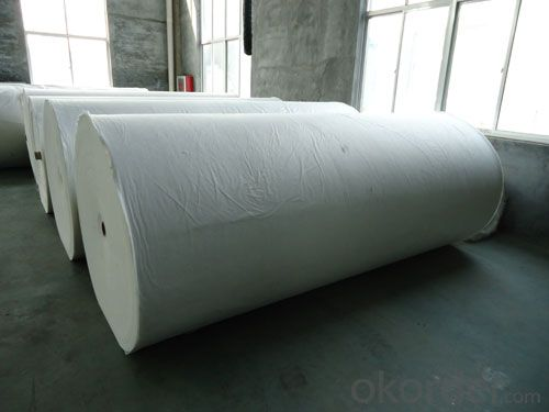 Staple Fiber Needle Punched Geotextile/Non-Woven Geotextile