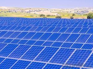 30-60W High Quality Poly Solar Panel Odm