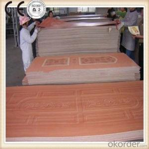 Melamine MDF Door Skin/HDF Moulded Door Skin Hot Press