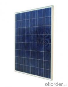 Poly Crystalline Solar Panel RS195(P)-48