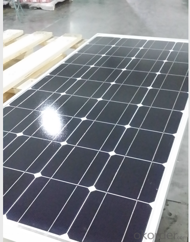 Monocrystalline Solar Panel CNPV-100w High Performance 36 Cell