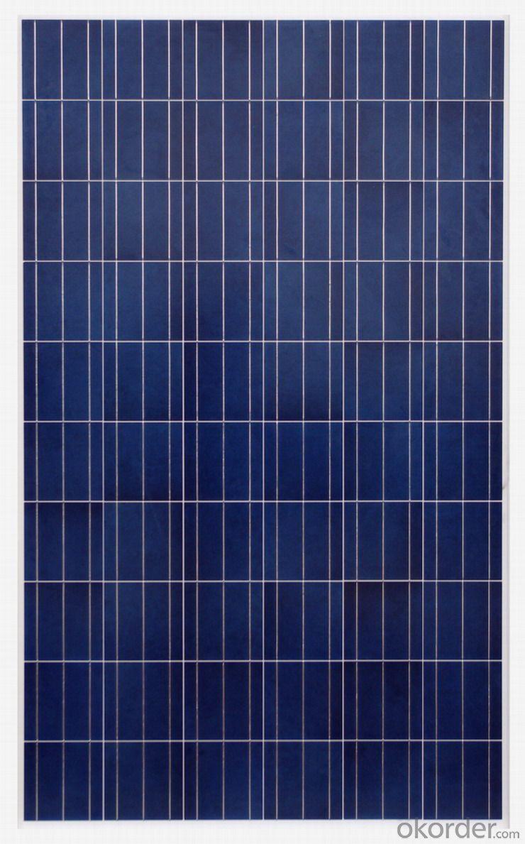 260w Polycrystalline Solar Module / Solar Panel