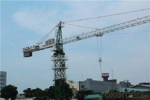 Hammer HeadTower Crane with Competitive Price