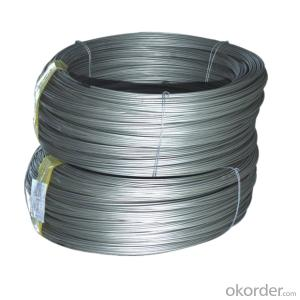 Hot Rolled Steel Wire Rods in Coils  SAE1008B