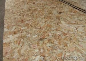 Oriented Strand Board Chinese OSB Board for Packing