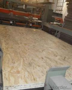 Oriented Strand Board Chinese OSB1 Board for Package