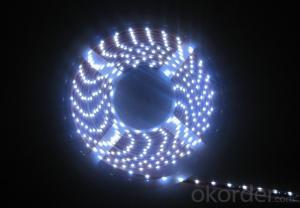 26V 240LEDS/Meter 3014 Led Strip Lights