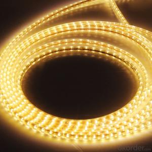 39V 240LEDS/Meter 3014 Led Strip Lights