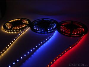 30V 240LEDS/Meter 3014 Led Strip Lights