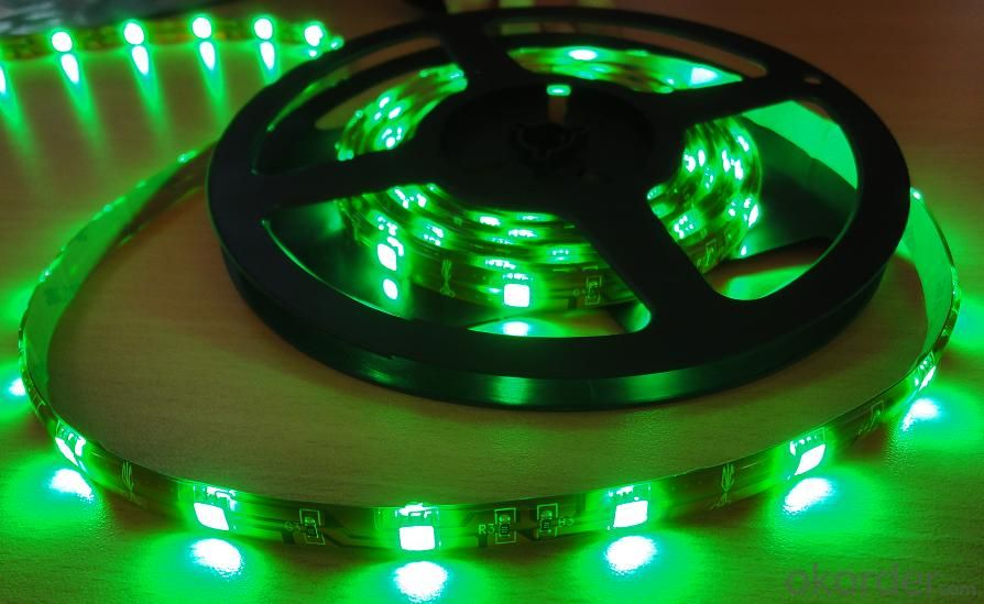 20V 240LEDS/Meter 3014 Led Strip Lights