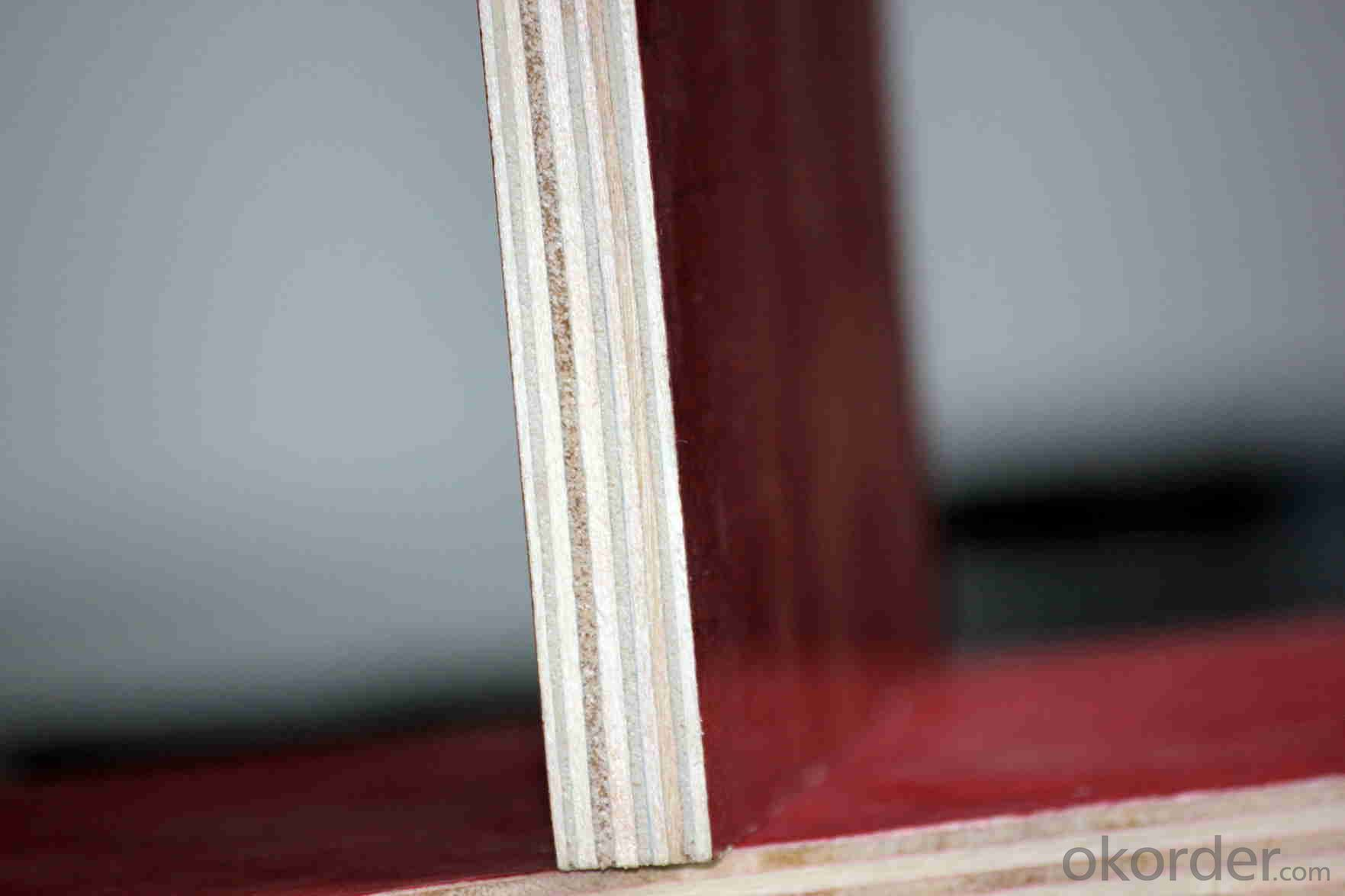 15mm Finger Jointed Film Faced Plywood for Building Usage