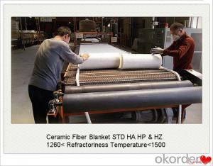 Ceramic Fiber Blanket For Steel Factory for Coke Oven Door Made In China