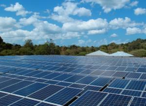 High Power Poly Solar Panel/Moudle---ICE 33