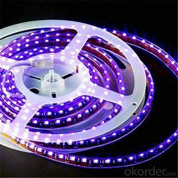 Led Lights 12v 9w To 100w e27 6046lumen CE UL Approved China